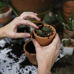 Why Gardening is a Great Way to Stay Active