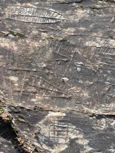 Pedra Letreira Gois