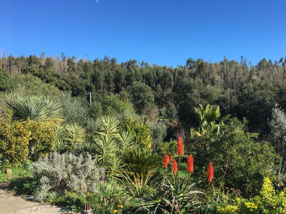 owen garden