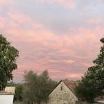 sunset mea